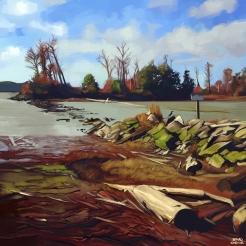 Shady Island - Steveston BC