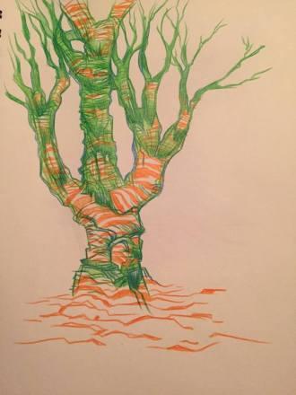 trees31